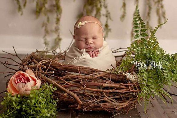 85. Newborn Real Wood Nest Prop
