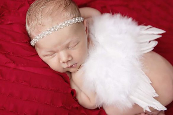 93. Newborn Wings 2