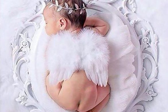93. Newborn Wings